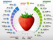 Vitamins and minerals of garden strawberry. Infographics about nutrients in strawberry fruit. Qualitative vector illustration for strawberry vitamins fruits health food nutrients diet etc. It has transparency blending modes gradients poster