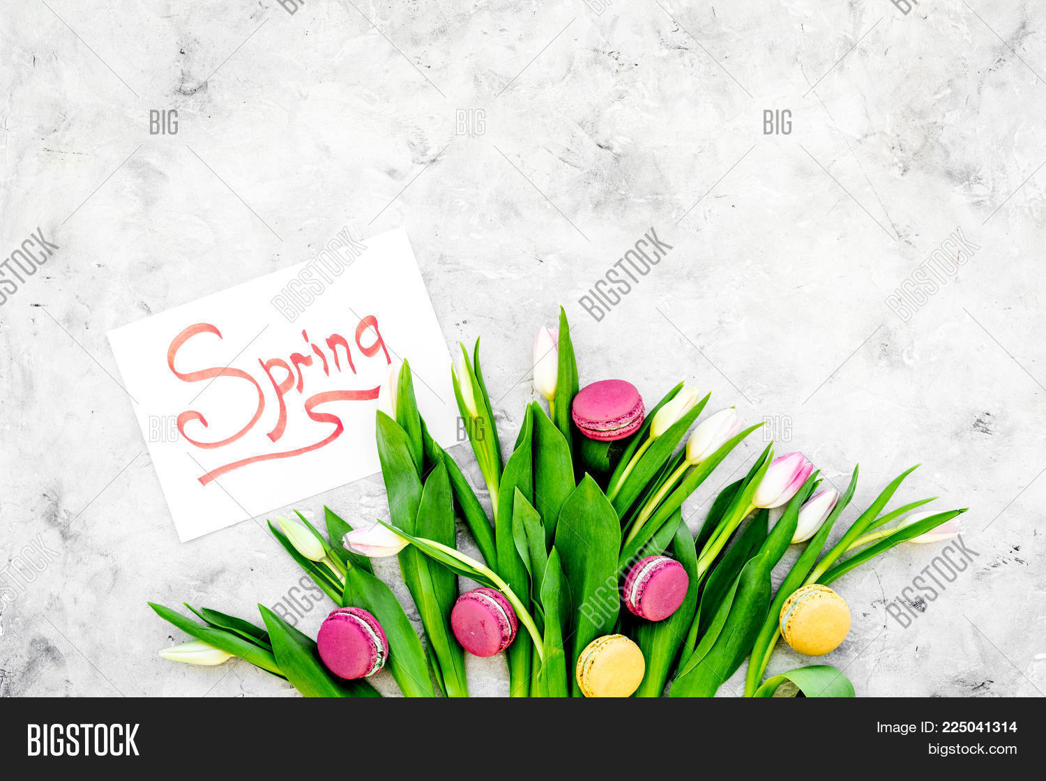 macarons tulips sweets near powerpoint template macarons tulips