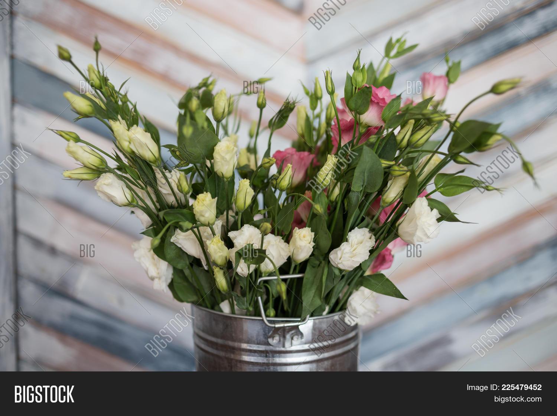 Pink White Lisianthus Image Photo Free Trial Bigstock