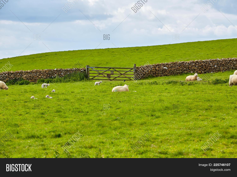 landscape of farm powerpoint template powerpoint template