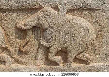 Stone bas-reliefs on the walls around the Vittala Temple in Hampi, Karnataka, India. Unesco World Heritage Site. The famous tourist destination from GOA.