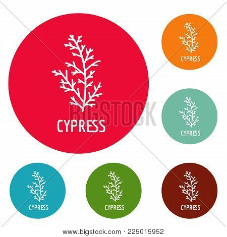 Cypress leaf icons circle set vector isolated on white background