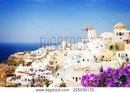 Oia, traditional white greek village of Santorini, Greece with flowers