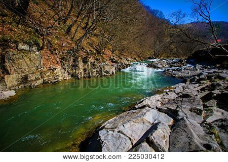 Forest river water landscape. shallow river with spring scenery along the shore