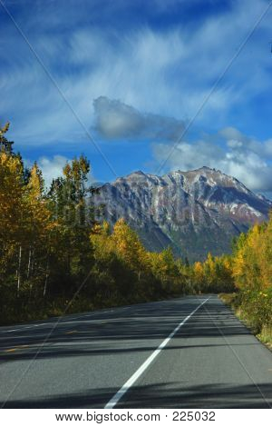 Parks Highway In Fall Colors