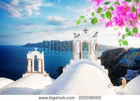 white church belfries and volcano caldera with sea landscape, beautiful details of Santorini island, Greece with flowers