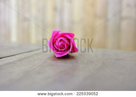 A single pink rose flower on the old wooden table with blur wood wall background for Valentine's Day concept