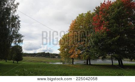Autumn landscape in the countryside, lake, sky, autumn day.Autumn maple leaves on a tree.Maple leaves against the sky.
