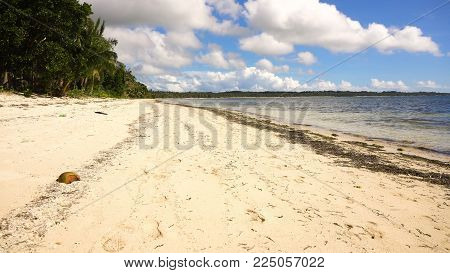 Beautiful tropical island with sand beach, palm trees.Seascape ocean and beautiful beach paradise, Siargao, Philippines. Tropical landscape: beach with palm trees. Travel concept.