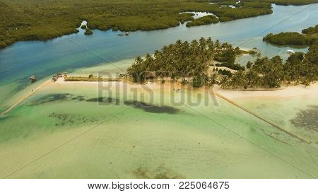 Aerial view of tropical beach on the island Siargao, Philippines. Beautiful tropical island with sand beach, palm trees. Tropical landscape: beach with palm trees. Seascape: Ocean, sky, sea . Philippines. Travel concept.