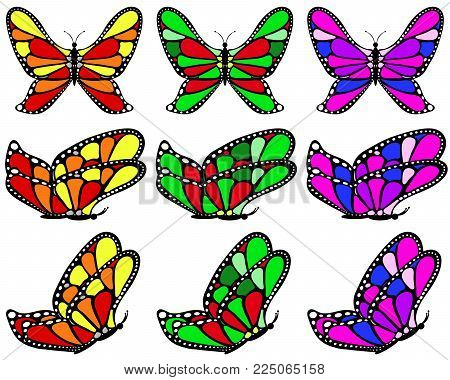 Varicolored patterned butterfly set on white isolated background, 9 pcs.