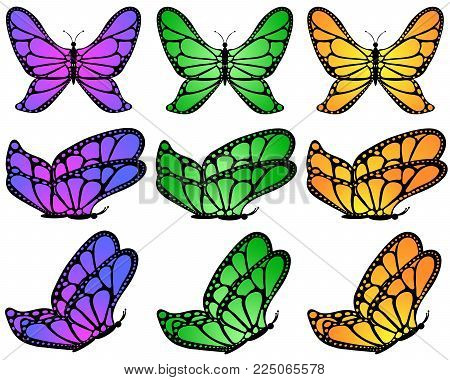 Color gradient patterned butterfly set on white isolated background, 9 pcs.