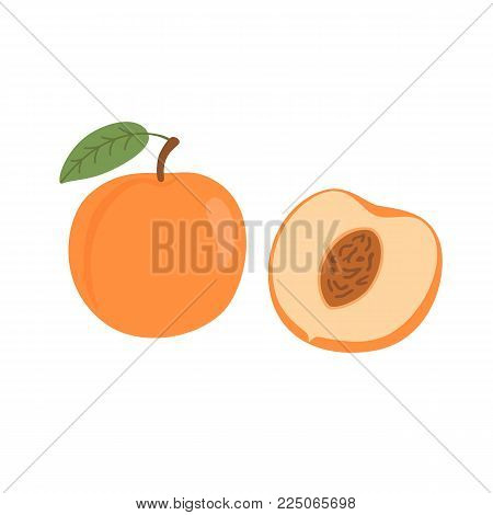 Bright vector set of colorful half and whole of juicy peach. Fresh cartoon peaches isolated on white background. Juice or jam logotype.