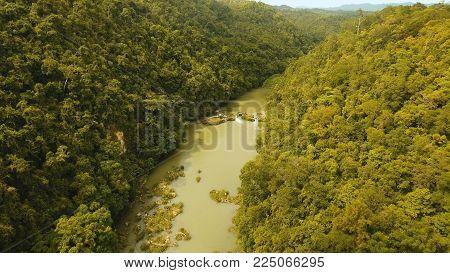 Aerial view, River in the rainforest among the jungle Tropical Loboc river in the rain forest in Asia. Mountain river flows through green forest. Philippines, Bohol. Landscape.