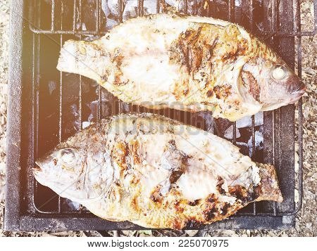 Making fish on a bbq barbecue grill over hot coal. Close up shot