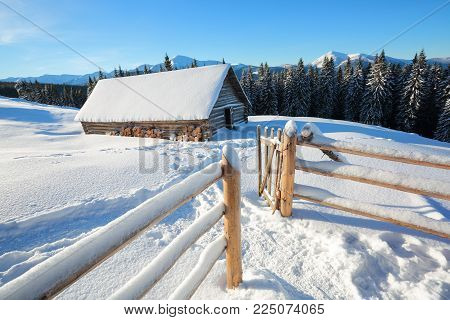 A trodden path leads to the wooden house in the snow on the background of beautiful snow-capped mountains. Wooden fence and tall spruces.  Winter landscape for leaflets.