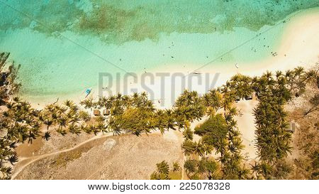 Aerial view of tropical beach on the island Malcapuya, Palawan, Philippines. Beautiful tropical island with sand beach, palm trees. Tropical landscape: beach with palm trees. Seascape: Ocean, sky, sea. Travel concept.