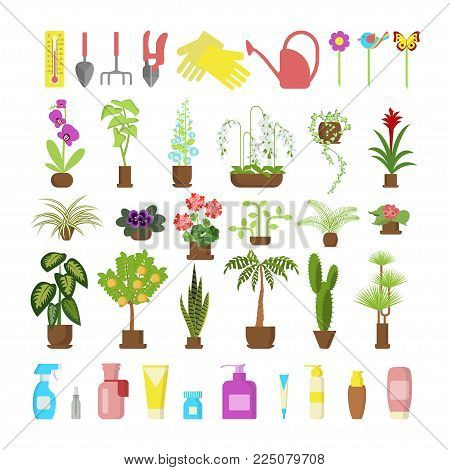 Window gardening infographic elements. Equipments for take care of indoor flowers. Vector set of flat illustration of horticultural sundry, house plants and flowers in pots. EPS 10
