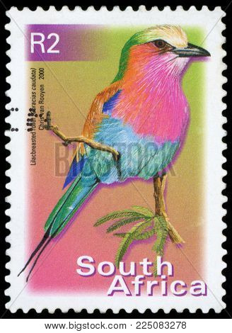 SOUTH AFRICA - CIRCA 2000: A stamp printed in South Africa, shows a bird Lilac-brested Roller (Coracias caudata), circa 2000