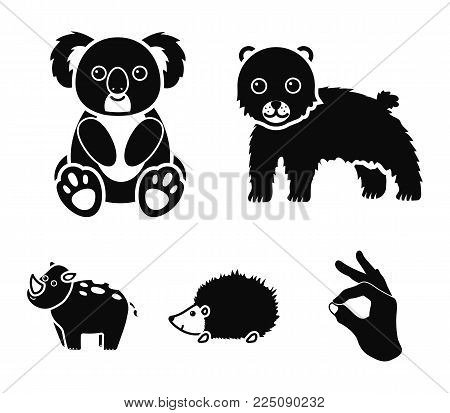 Rhino, koala, panther, hedgehog.Animal set collection icons in black style vector symbol stock illustration .