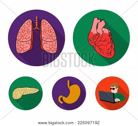 Heart, lungs, stomach, pancreas. Human organs set collection icons in flat style vector symbol stock illustration .
