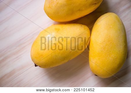 Yellow mango on wooden background. Bunch of tropical fruits. Oval yellow mango pile. Sweet dessert or vegetarian food. Exotic mango closeup photo. Tasty exotic fruit mango. Delicious juicy fruit