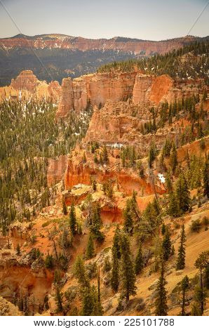 Trees and Hoodoos in Bryce Canyon Park
