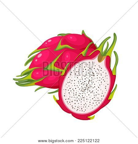 Summer tropical fruits for healthy lifestyle. Red dragon fruit, whole fruit and half. Vector illustration cartoon flat icon isolated on white.