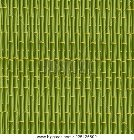 Green bamboo stick pattern background. Vector illustration, template, wallpaper. Bamboo poles, steam print.