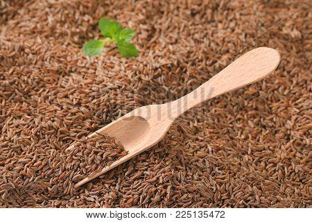 scoop of caraway seeds - full frame