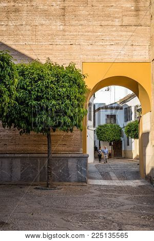 Cordoba, Spain - April 10, 2017: Old typical street with orange tree and arch in Cordoba