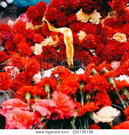Background of red carnations