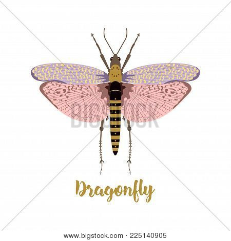 greeting card with bright dragonfly on white background, dragonfly with inscription for any design