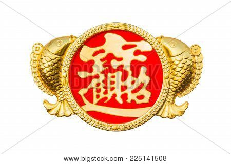 Chinese New Year couple fish of decorative golden elements with good luck and wealthy word in Chinese word to celebrate special occasion in China isolated on white background (Clipping path included)