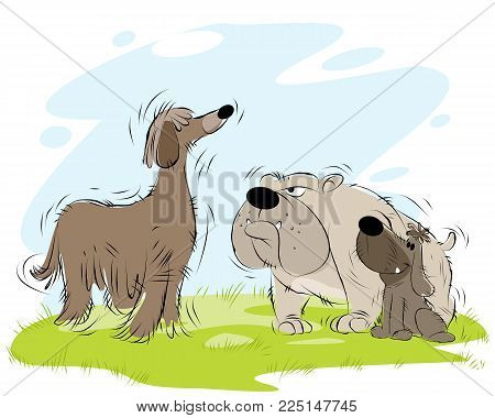 Vector illustration of meeting dogs on the walk