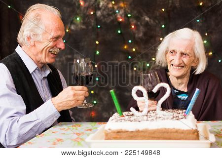 Grandma celebrating birthday with her elderly son