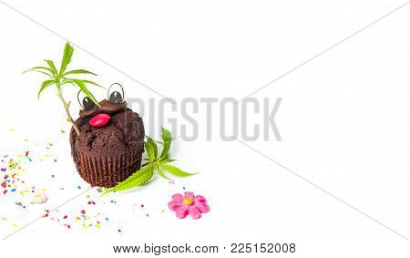 Chocolate muffin with marijuana leaf isolated on white.