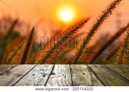 Golden nature and sunlight in the morning on wooden floor montage copy spec for your product texture or design
