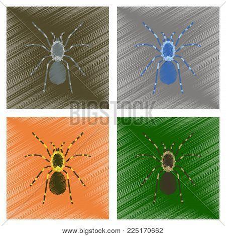 assembly flat shading style illustration of spider tarantula