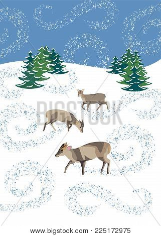 Winter scene with three muntjac deer in swirling snow