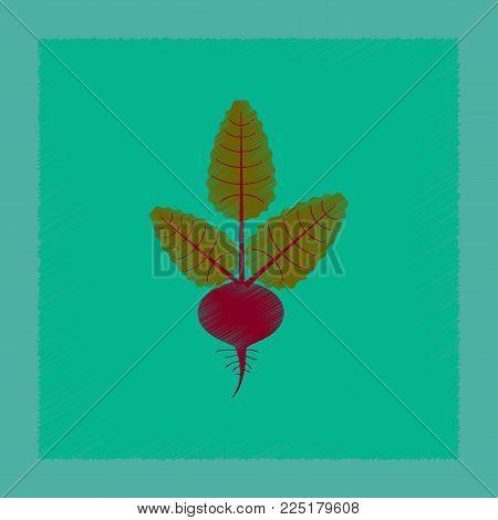 flat shading style illustration of plant beta