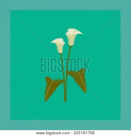 flat shading style illustration of flower calla