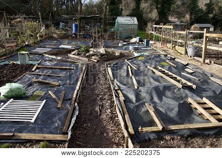 Allotment beds in Winter covered with sheets of weed control fabric