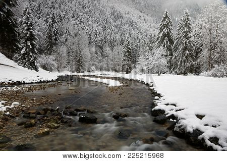 Winter landscape of a river through a forest of French Alps