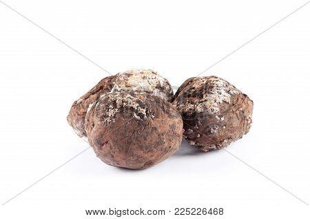 Bad potato isolated on white background. Food ingredients