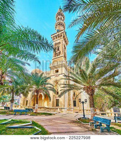 Relax in shady palm garden, located next to Abu al-Abbas al-Mursi Mosque, Alexandria, Egypt
