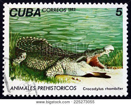 Cuba - Circa 1982: A Stamp Printed In Cuba Shows Cuban Crocodile, Crocodylus Rhombifer, Is A Species