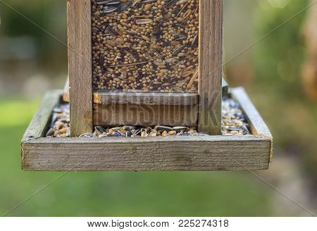 Bird house with bird feed Grains and cereal