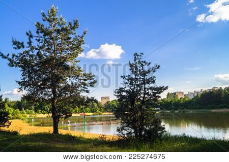 Young pines along the natural forest lake with artifical sandy beach, been adjusted for free public leisure activities. Moscow residential suburb, Zarya district, Balashikha.