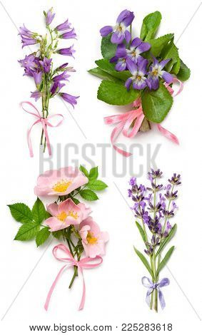 Bouquet of wild violets, dog rose, lavender and bell flowers with a pink ribbon on a white background